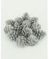 18 glitter dennenappels zilver