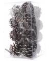 Kerst dennenappel hangers met sneeuw