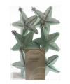 Kerstboom hangers mintgroen sterren 6x