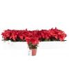 Kerstster kunstbloemen rood 20 cm