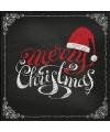Merry christmas servetten 20 stuks