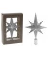 Zilveren piek ster vorm 25 cm