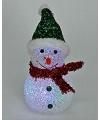 Kerstverlichting sneeuwpop figuur