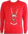 Foute Rudolph print truien voor kids