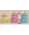 Geld pot happy birthday taart 13 cm